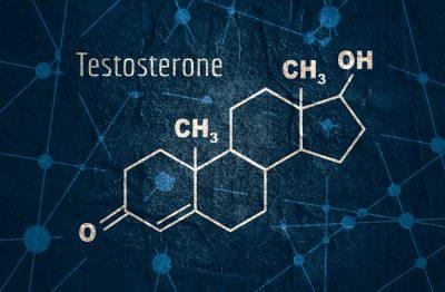 testosterone hormone