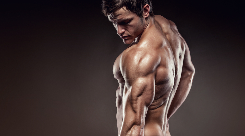 Triceps Exercises that Work