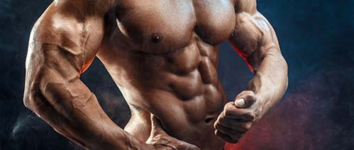 Muscle Building After Male UltraCore Testosterone Booster